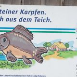 kasseteich-001