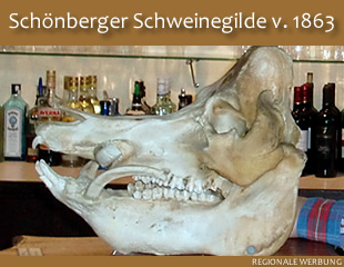 Schweinegilde Schönberg v. 1863